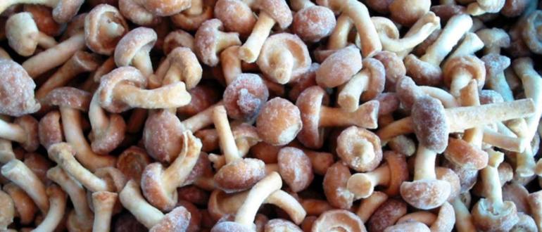 Как замораживать грибы опята на зиму в морозилке